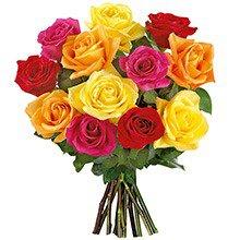 12 Lindas Rosas Coloridas