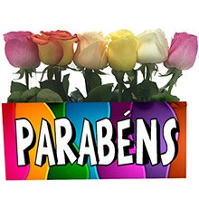 Jardim de Parabéns