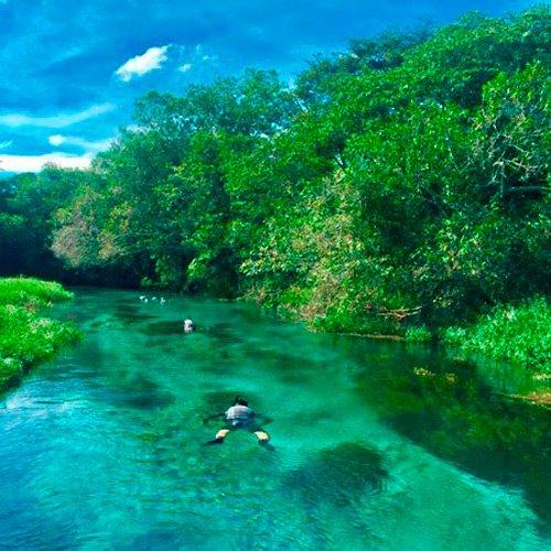 Foto de Mato Grosso do Sul