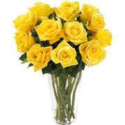 Brilhantes Rosas Amarelas no Vaso