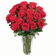 Poema de 24 Rosas Vermelhas