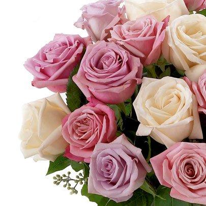 Poema de Rosas Mescladas