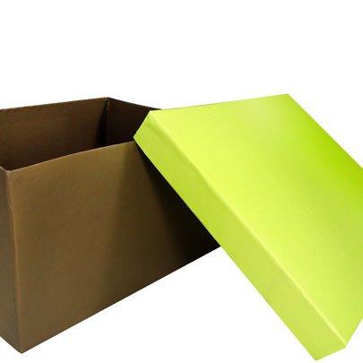 Caixa Marrom - Verde Limão