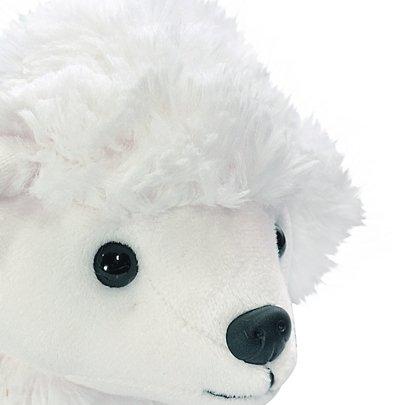 Cachorrinho Poodle