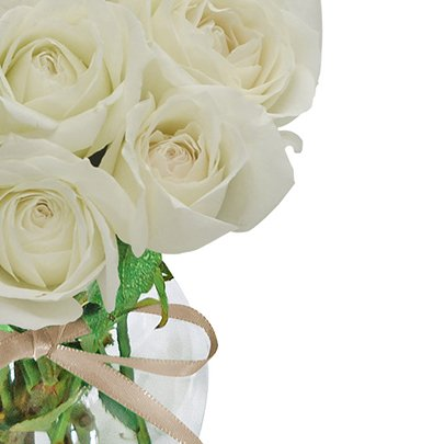 Surpresa de Rosas Brancas no Vaso