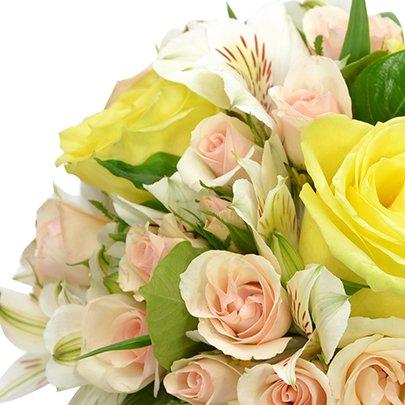 O Segredo da Flor Ouro