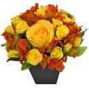 O Segredo da Flor Orange