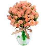 Contagiar de Rosas Champanhe no Vaso