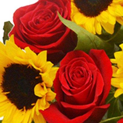 Luxuosos Girassóis e Rosas Colombianas Vermelhas