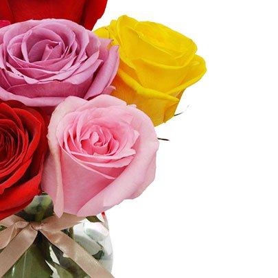 Surpresa de Rosas Coloridas Colombianas