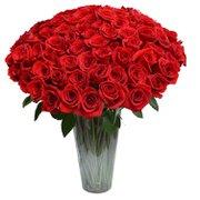 100 Rosas Colombianas no Vaso