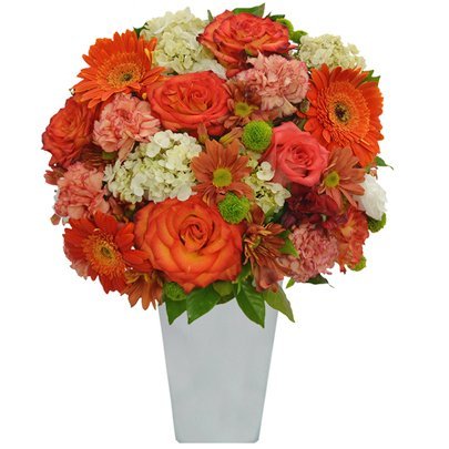 Flores Nobres Orange no vaso