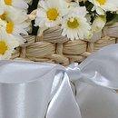 Piquenique de Margaridinhas Brancas