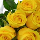 Buquê de 36 Rosas Amarelas