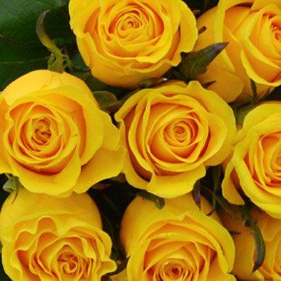 Buquê de 42 Rosas Amarelas