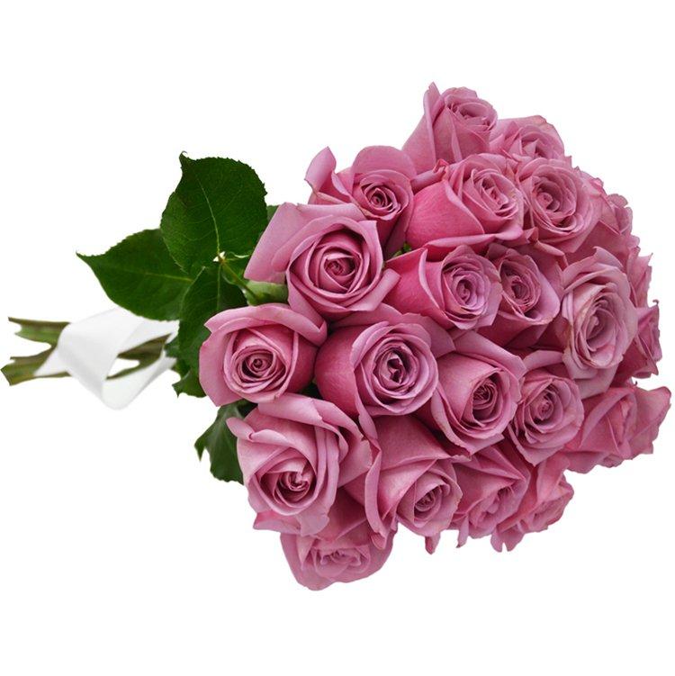 Buquê de 24 Rosas Lilás