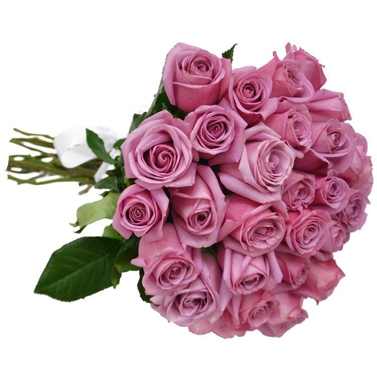 Buquê de 36 Rosas Lilás