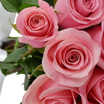 Buquê de 30 Rosas Cor de Rosa