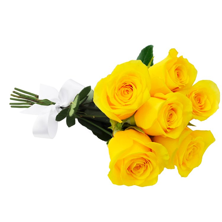 Buquê de 6 Rosas Amarelas