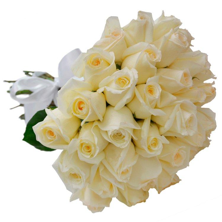 Buquê de 36 Rosas Brancas