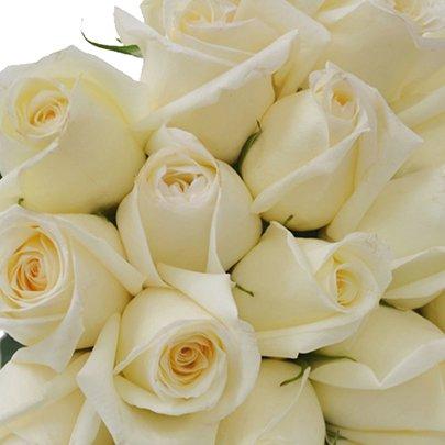 Buquê de 30 Rosas Brancas