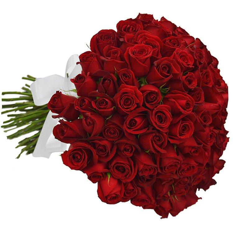 Buquê de 50 Rosas Vermelhas