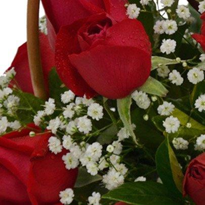 Cesta de 24 Rosas Vermelhas