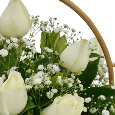 Cesta de 12 Rosas Brancas