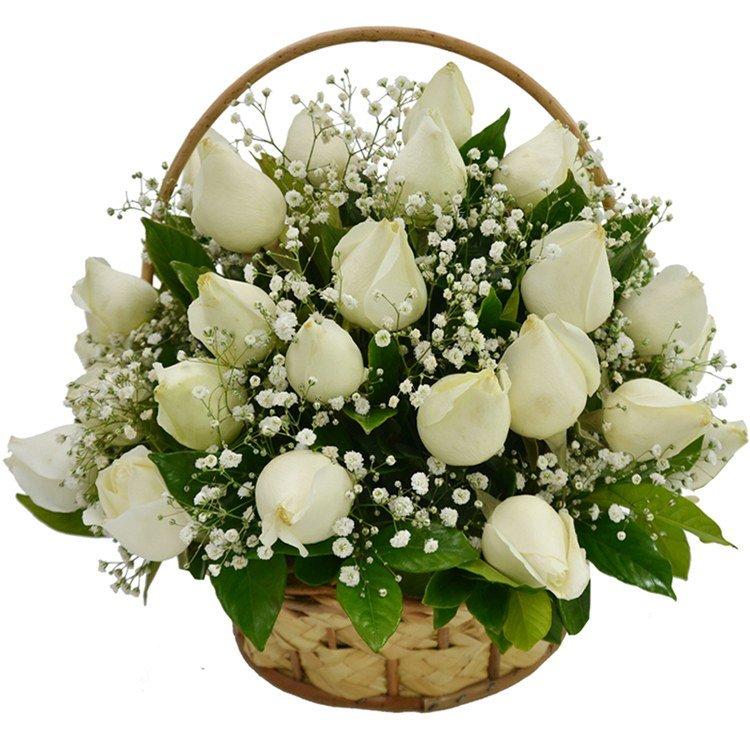 Cesta de 24 Rosas Brancas