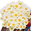 Cesta de Chocolates Doçura