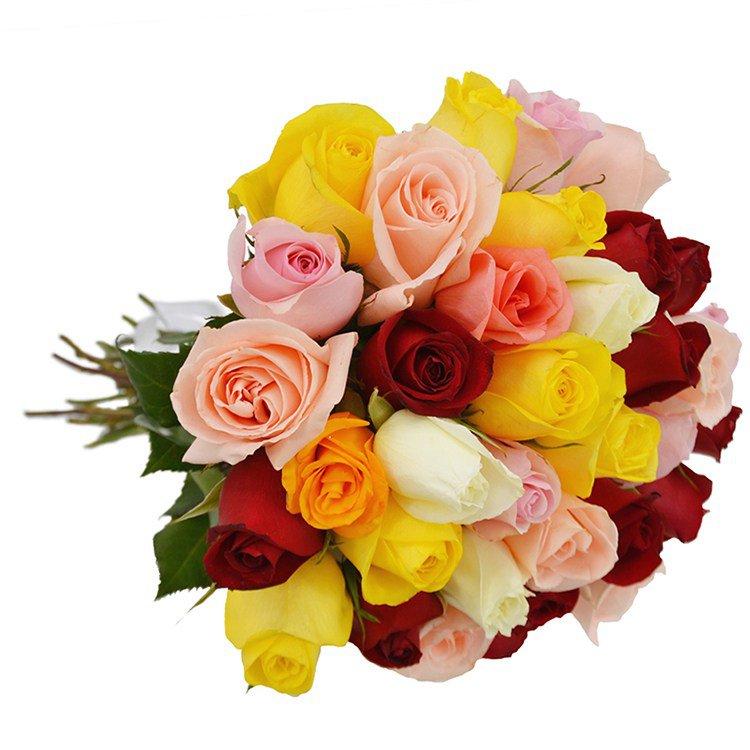 Buquê de 36 Rosas Coloridas