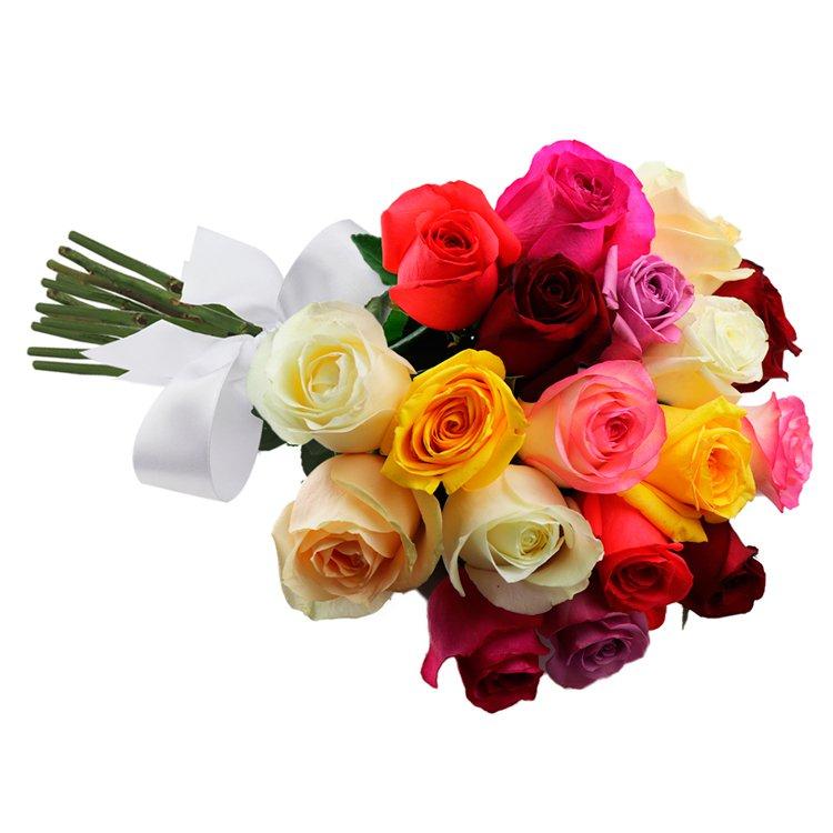 Buquê de 18 Rosas Coloridas