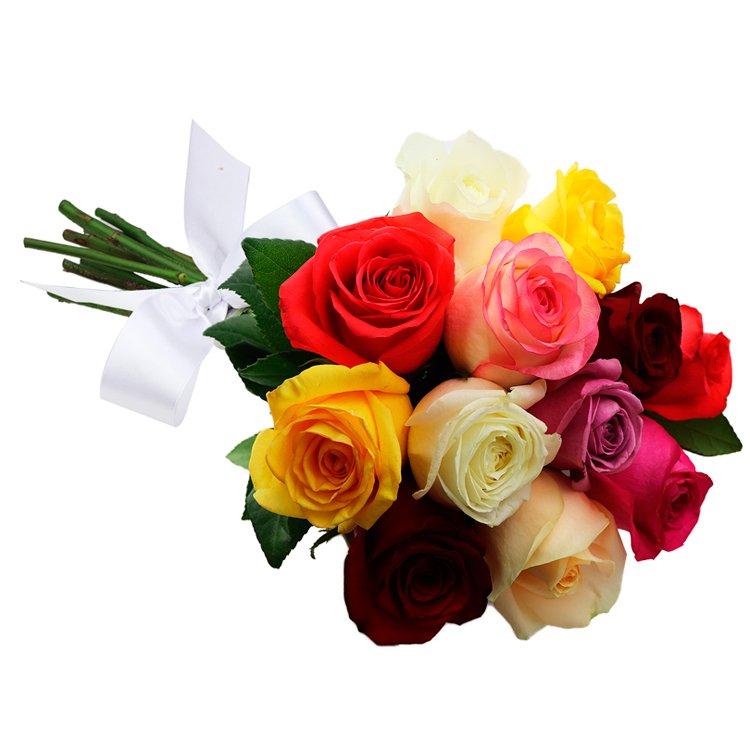 Buquê de 12 Rosas Coloridas