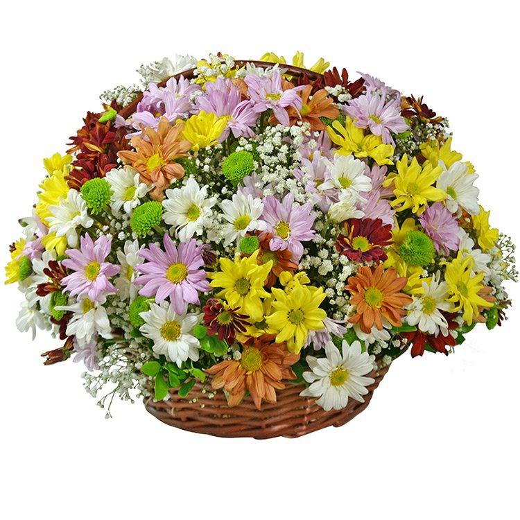 Cesta Surpresa das Flores