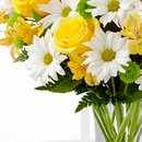 Belas Flores Internacional