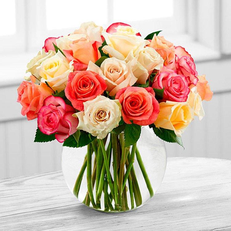 Sutileza de Rosas  Internacional