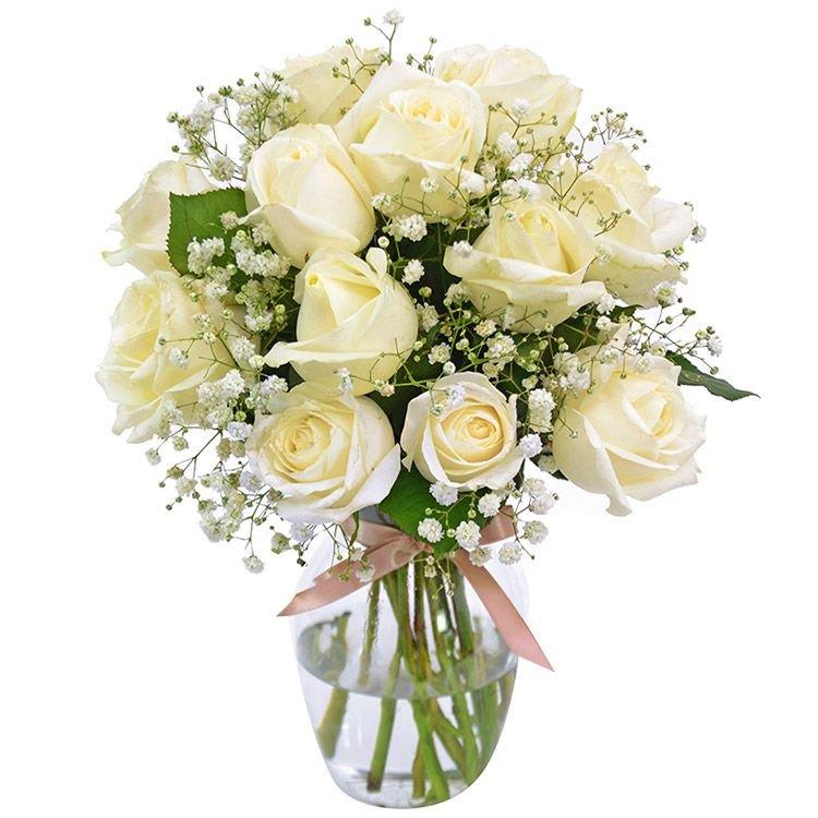 Elegância das Rosas Brancas