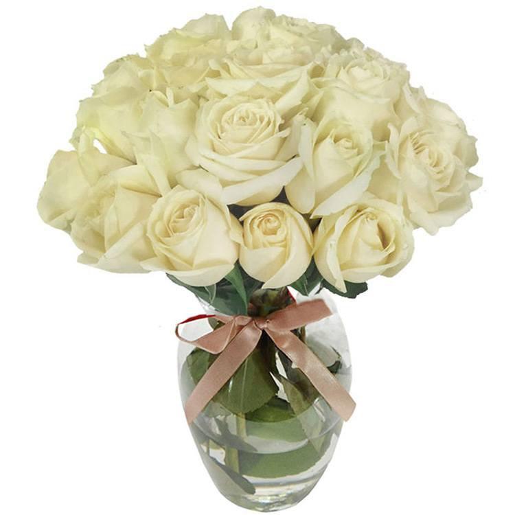 20 Rosas Brancas no Vaso