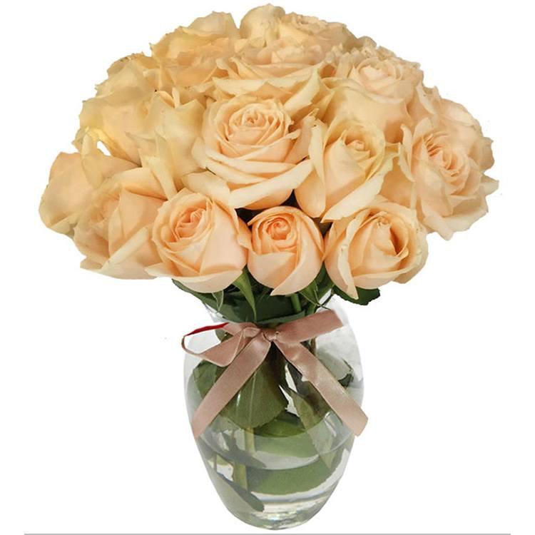 20 Rosas Champanhe no Vaso