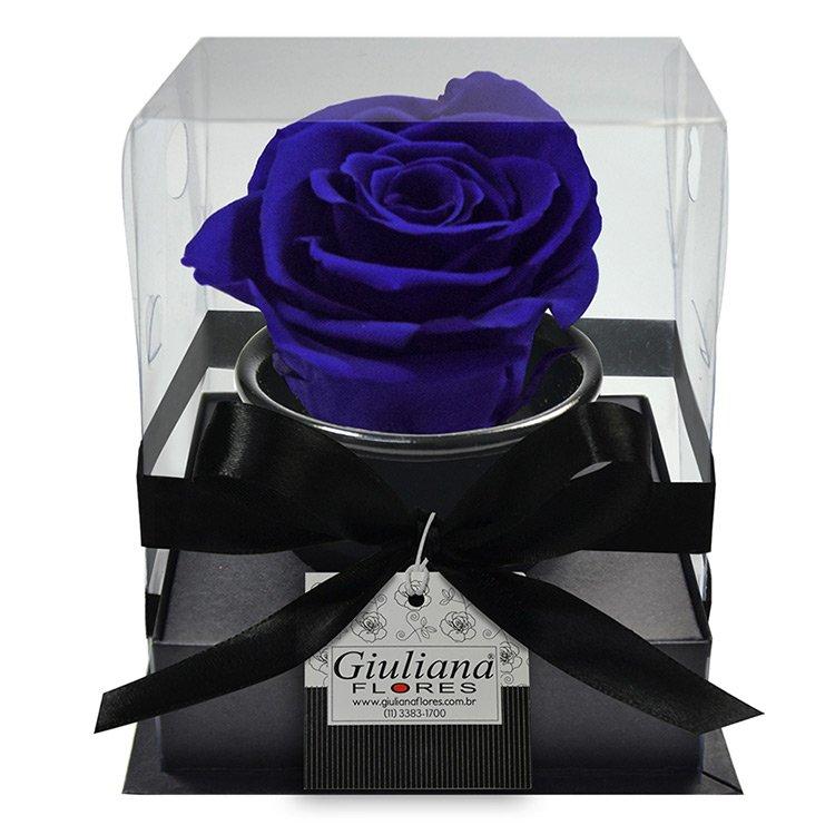 Rosê Encantada Azul Escuro