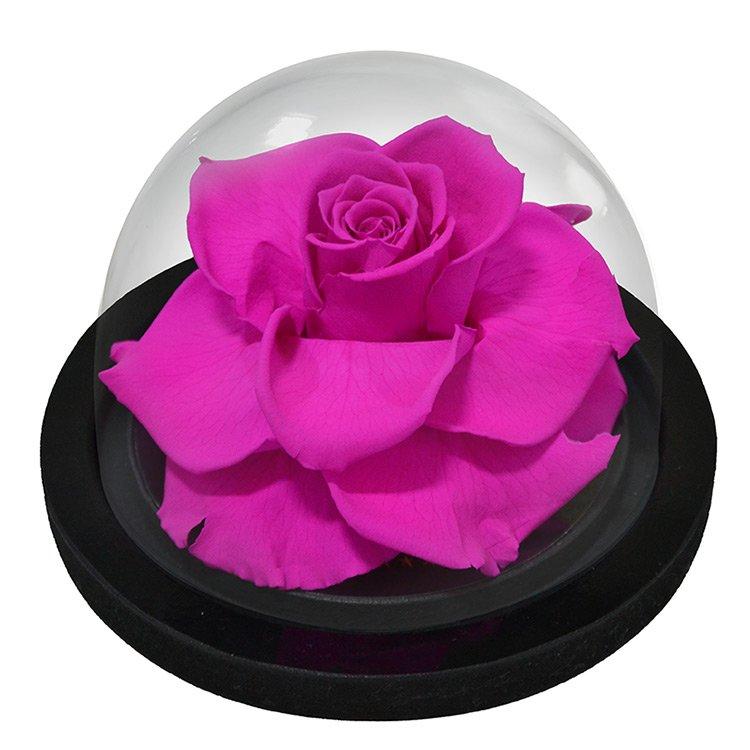Globo de Rosa Encantada Pink
