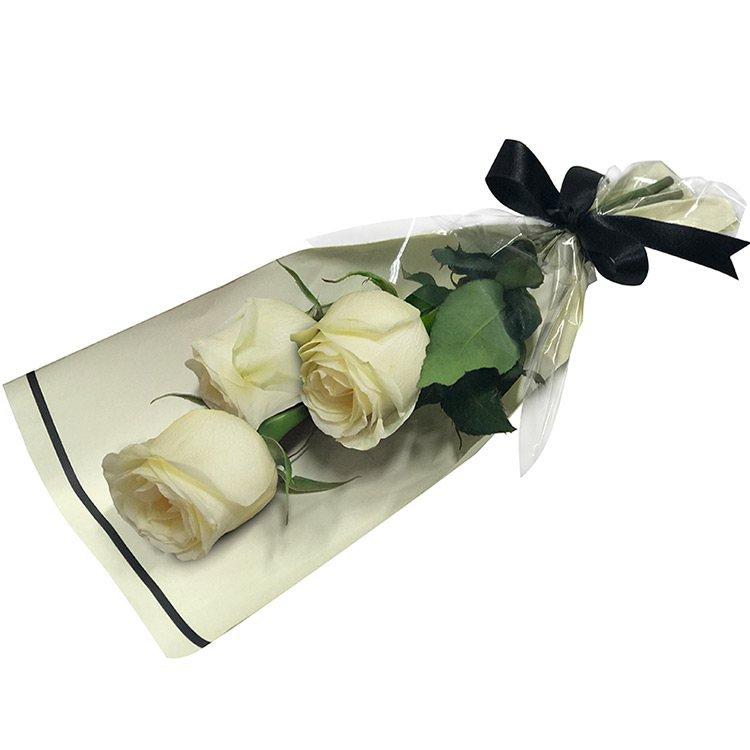 Rosas Brancas Especial