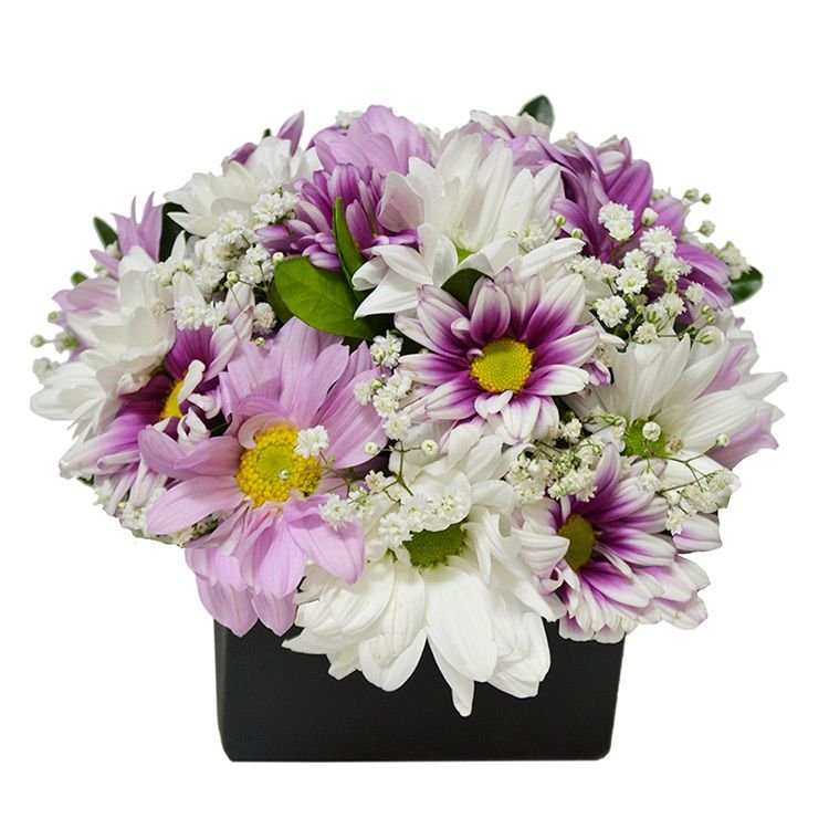 Arranjo de Flores do Campo Lilás