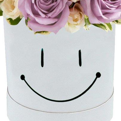 Sorriso da Harmonia
