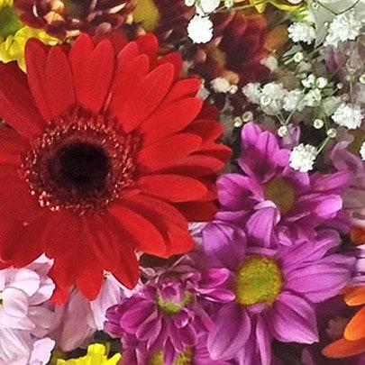Buquê de Flores do Campo Mix