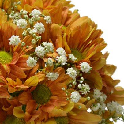 Delicado Mix de Flores Silvestres Laranja