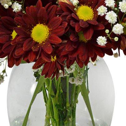 Delicado Mix de Flores Silvestres Vermelho