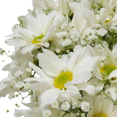 Delicado Mix de Flores Silvestres Branco