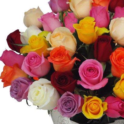 Fabuloso Cone de Rosas  Coloridas e Placa Feliz Aniversário