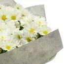 Mini Vaso de Margarida e Caixa de Chocolate
